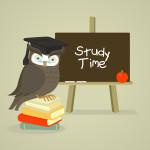 study_owl